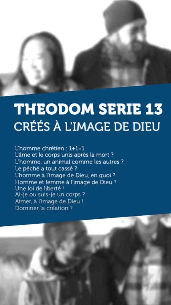 SERIE 13 BANDEAU THEODOM
